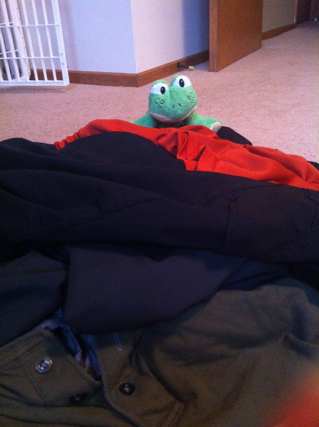 """One of the puppy's babies landed """"just so"""" on a pile of clothes."""