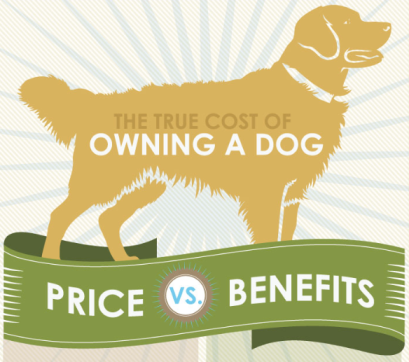 infographic_cost of owning a dog