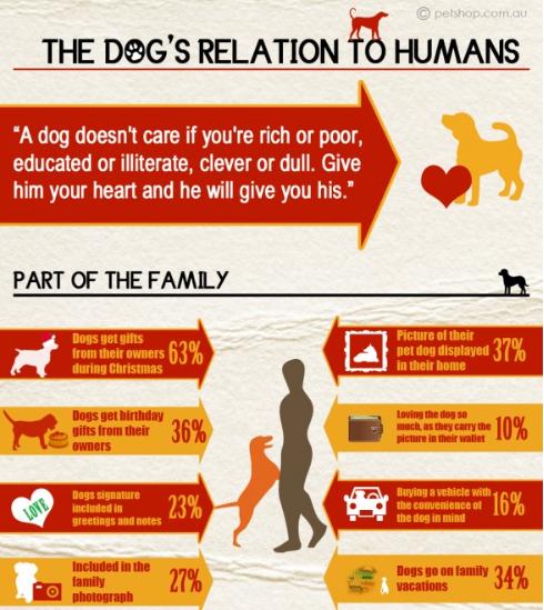 dog info1