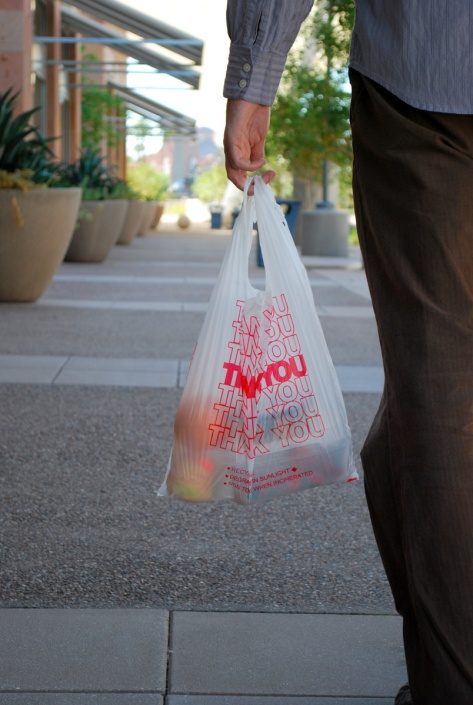 delight_grocery bag1